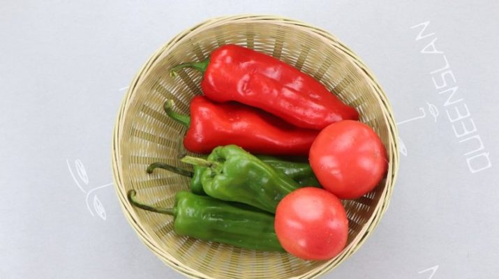 domácí zelenina