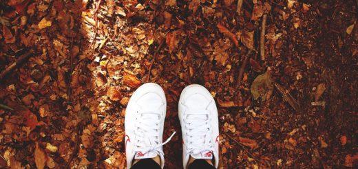 Jeseň v znamení tenisiek. Aké si zaobstarať?
